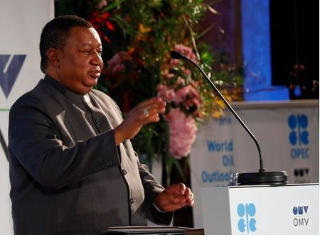 OPEC Secretary General Mohammad Barkindo delivers his speech during the presentation of the World Oil Outlook in Vienna, Austria November 5, 2019. REUTERS/Leonhard Foeger/File Photo