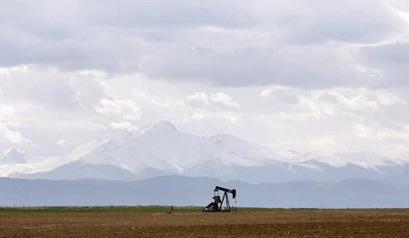 n oil derrick can be seen in a field near Denver, Colorado May 16, 2008. REUTERS/Lucas Jackson (UNITED STATES)
